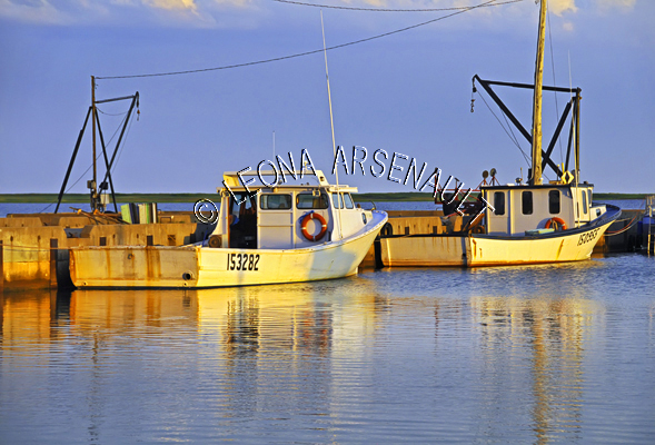 CANADA;PRINCE EDWARD ISLAND;PRINCE COUNTY;ABRAM-VILLAGE;FISHING BOATS;BUOYS;BOATS;PIER;WHARF;HARBOUR;NAUTICAL;WATER;REFLECTION;SUMMER;SEASCAPE;SCENIC;HORIZONTAL