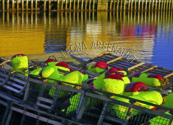 CANADA;PRINCE EDWARD ISLAND;PRINCE COUNTY;ABRAM-VILLAGE;BUOYS;LOBSTER TRAPS;TRAPS;WATER;REFLECTION;NAUTICAL;WATERSCAPE;HORIZONTAL