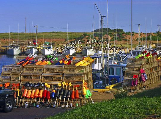 CANADA;PRINCE EDWARD ISLAND;PRINCE COUNTY;SEACOW POND;FISHING BOATS;BOATS;LOBSTER TRAPS;TRAPS;BUOYS;RED CLIFFS;NAUTICAL;SUMMER;SEASCAPE;SCENIC;HORIZONTAL