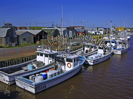 CANADA;PRINCE EDWARD ISLAND;KING'S COUNTY;NAUFRAGE;FISHING BOATS;BOATS;SHED;SHACK;SUMMER;NAUTICAL;SEASCAPE;SCENIC;HORIZONTAL