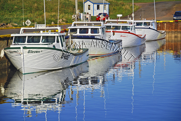 CANADA;PRINCE EDWARD ISLAND;PRINCE COUNTY;CAP-EGMONT;FISHING BOATS;BOATS;WATER;SPRING;REFLECTION;NAUTICAL;SEASCAPE;SCENIC;HORIZONTAL
