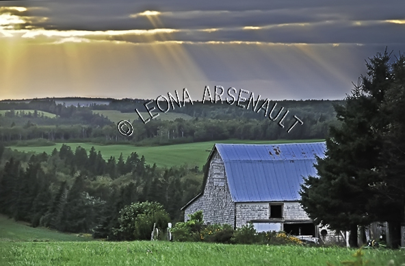 CANADA;PRINCE EDWARD ISLAND;QUEEN'S COUNTY;NEW GLASGOW;SUNSET;FIELDS;DUSK;FARMING;AGRICULTURE;BARN;BUILDING;SUMMER;LANDSCAPE;SCENIC;HORIZONTAL
