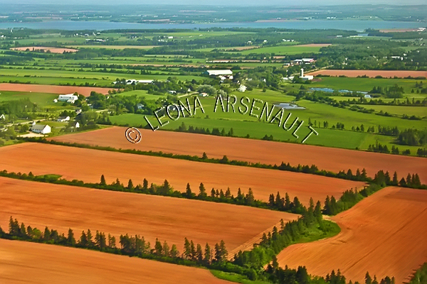 CANADA;PRINCE EDWARD ISLAND;QUEEN'S COUNTY;AERIAL;FIELDS;PASTURES;FARMING;AGRICULTURE;SPRING;LANDSCAPE;SCENIC;HORIZONTAL