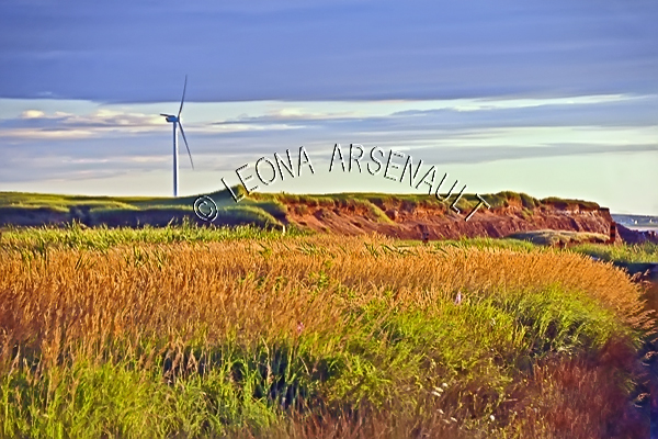 CANADA;PRINCE EDWARD ISLAND; PRINCE COUNTY;WEST CAPE WIND FARM;WINDMILLS;ENERGY;RED SOIL;CLIFFS;FALL;LANDSCAPE;SCENIC;HORIZONTAL