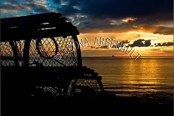 CANADA;PRINCE EDWARD ISLAND;PRINCE COUNTY;CAP-EGMONT;LOBSTER TRAPS;TRAPS;SUNSET;WATER;NORTHUMBERLAND STRAIT;SILHOUETTE;SUN;DUSK;WATERSCAPE;HORIZONTAL