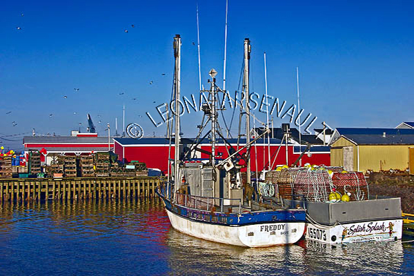 CANADA;PRINCE EDWARD ISLAND;PRINCE COUNTY;ALBERTON;NAUTICAL;BOATS;FISHING BOATS;HARBOUR;PIER;WHARF;WATER;SEASCAPE;SCENIC;HORIZONTAL