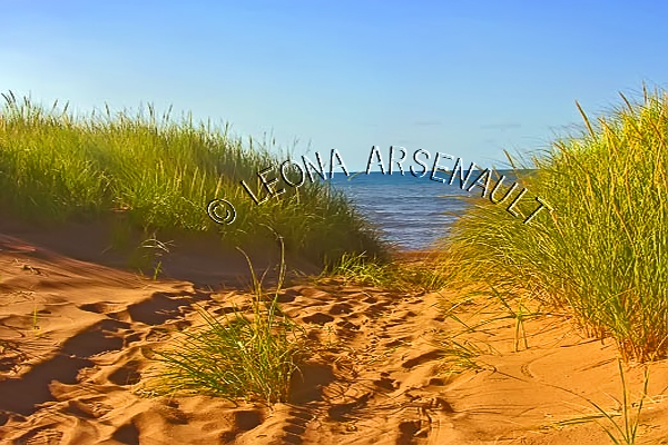 CANADA;PRINCE EDWARD ISLAND;PRINCE COUNTY;MAXIMEVILLE;BEACHES;SAND;SUMMER;RED SOIL;WATER;WATERSCAPE;SCENIC;HORIZONTAL