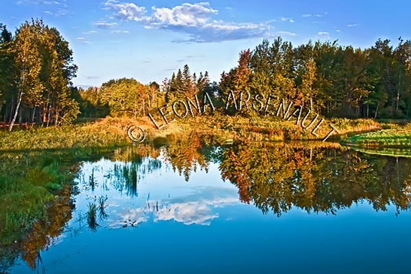 CANADA;PRINCE EDWARD ISLAND;PRINCE COUNTY;WELLINGTON;REFLECTIONS;FALL;WATER;LANDSCAPE;WATERSCAPE;SCENIC;HORIZONTAL
