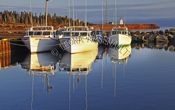 CANADA;PRINCE EDWARD ISLAND;PRINCE COUNTY;CAP-EGMONT;BOATS;FISHING;WATER;LIGHTHOUSES;CLIFFS;RED CLIFFS;PIERS;WHARFS;HARBOURS;NAUTICAL;SPRING;SEASCAPES;SCENIC;HORIZONTAL