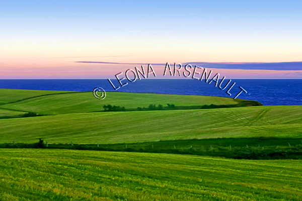 CANADA;PRINCE EDWARD ISLAND;QUEEN'S COUNTY;PARK CORNER;PASTURES;FIELDS;FARMING;AGRICULTURE;WATER;SUMMER;WATERSCAPE;LANDSCAPE;SCENIC;HORIZONTAL