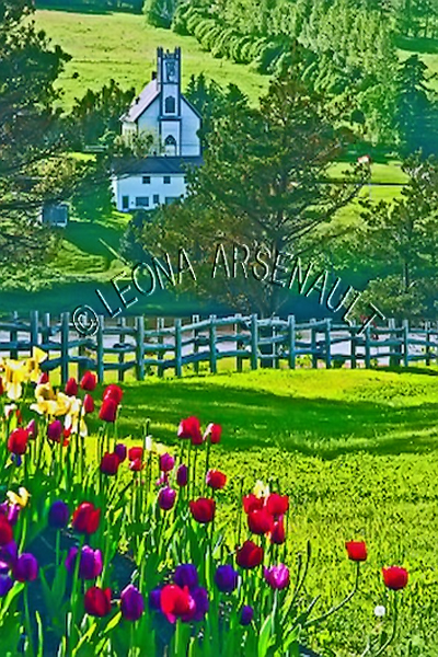 CANADA;PRINCE EDWARD ISLAND;QUEEN'S COUNTY;NEW GLASGOW;CHURCH;FLOWERS;TULIPS;FENCE;SUMMER;LANDSCAPE;SCENIC;VERTICAL
