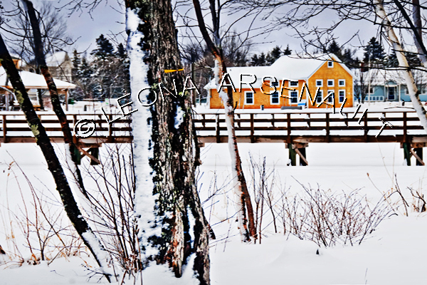 CANADA;PRINCE EDWARD ISLAND;PRINCE COUNTY;WELLINGTON;TREES;SNOW;SCENIC;BRIDGES;BUILDINGS;