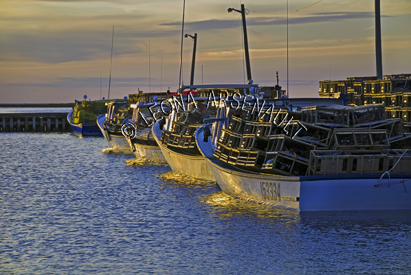 CANADA;PRINCE EDWARD ISLAND;PRINCE COUNTY;ABRAM-VILLAGE;  ;BOATS;FISHING;WATER;LOBSTER TRAPS;TRAPS;SUMMER;NAUTICAL;SEASCAPES;SCENIC;HORIZONTAL