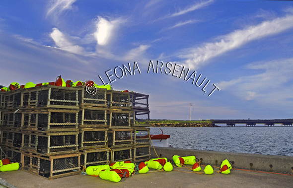 CANADA;PRINCE_EDWARD_ISLAND;PRINCE_COUNTY;ABRAM_VILLAGE;FISHING_;WATER;LOBSTER_