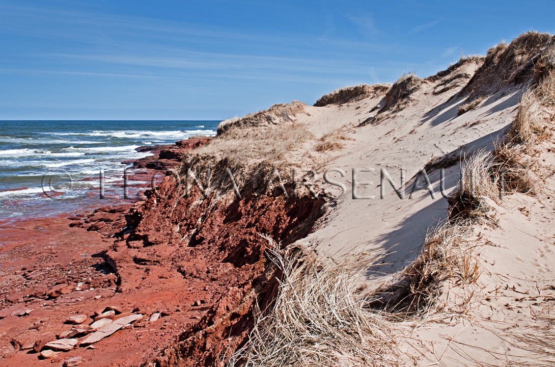CANADA,PRICE EDWARD ISLAND,QUEEN'S COUNTY,CAVENDISH,CAVENDISH BEACH,BEACH,SUMMER,WATER,LANDSCAPE,SCENIC,CLOUDS, SAND DUNES,HORIZONTAL,NATIONAL PARK