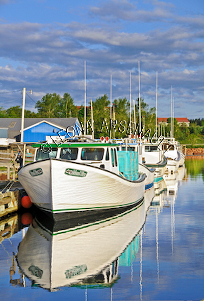 CANADA;PRINCE EDWARD ISLAND;QUEEN'S COUNTY;STANLEY BRIDGE;BOATS;SHEDS;PIERS;WHARFS;HARBOUR;SPRING;NAUTICAL;SEASCAPES;SCENIC;VERTICAL