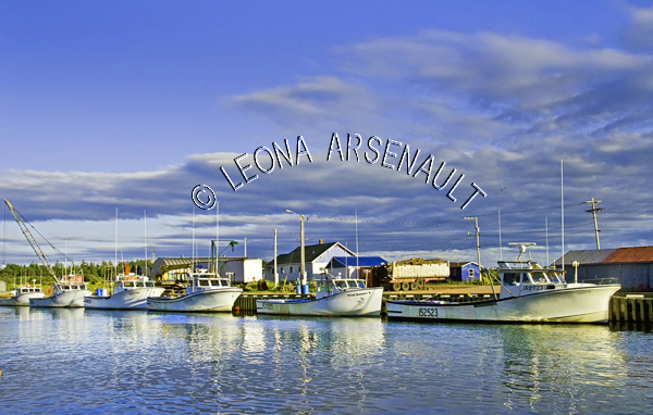 CANADA;PRINCE_EDWARD_ISLAND;PRINCE_COUNTY;MIMINEGASH;BOATS;FISHING_BOATS;FISHING