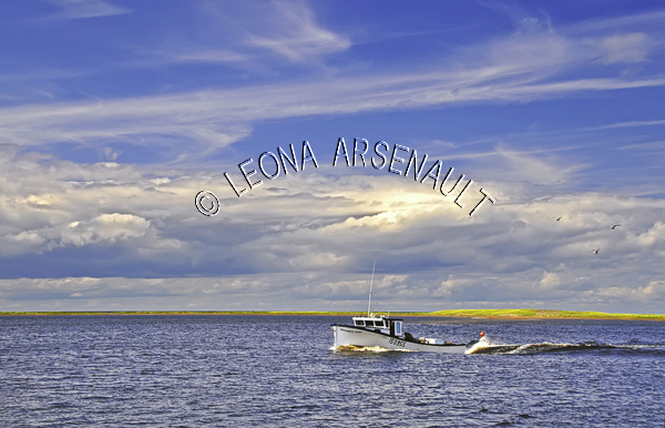 CANADA;PRINCE EDWARD ISLAND;PRINCE COUNTY;ABRAM-VILLAGE;BOATS;FISHING BOATS;NAUTICAL;SUMMER;SEASCAPES;SCENIC;HORIZONTAL