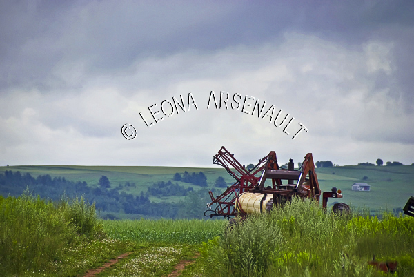 CANADA;PRINCE EDWARD ISLAND;QUEEN'S COUNTY;VICTORIA BY THE SEA; PASTURES;AGRICULTURE;ROLLING HILLS;SPRAYER;FARM EQUIPMENT;AGRICULTURE;SUMMER;LANDSCAPE;SCENIC;HORIZONTAL;