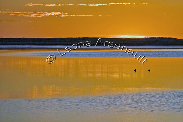 CANADA;PRINCE EDWARD ISLAND;PRINCE COUNTY;ABRAM-VILLAGE;WATER;SUNSET;BIRDS;SEAGULLS;SEASCAPE;HORIZONTAL