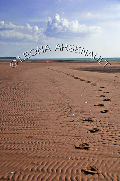 CANADA;PRINCE EDWARD ISLAND;PRINCE COUNTY;MAXIMEVILLE;BEACHES;SAND;SUMMER;FOOTPRINTS;VERTICAL