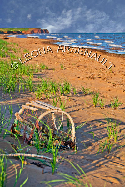 CANADA;PRINCE EDWARD ISLAND;PRINCE COUNTY;MAXIMEVILLE;WATER;BEACHES;SUMMER;LOBSTER TRAPS;TRAPS;SAND;SEASCAPE;SCENIC;VERTICAL
