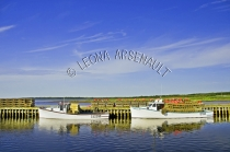 CANADA;PRINCE_EDWARD_ISLAND;PRINCE_COUNTY;ABRAM_VILLAGE;FISHING_BOATS;BUOYS;BOAT