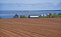 CANADA;PRINCE_EDWARD_ISLAND;QUEENS_COUNTY;SPRINGBROOK;BUILDINGS;POTATO_FIELDS;RE