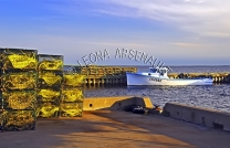 CANADA;PRINCE_EDWARD_ISLAND;PRINCE_COUNTY;ABRAM_VILLAGE;FISHING_BOAT;BOATS;LOBST