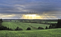 CANADA;PRINCE_EDWARD_ISLAND;QUEENS_COUNTY;NEW_GLASGOW;SUNSET;FIELDS;FARMING;AGRI