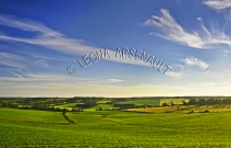CANADA;PRINCE_EDWARD_ISLAND;QUEENS_COUNTY;NEW_GLASGOW;SUNSET;FIELDS;DUSK;SOYBEAN