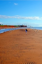 CANADA;PRINCE_EDWARD_ISLAND;PRINCE_COUNTY;MAXIMEVILLE;BEACHES;CHILDRIN;SAND;CLIF