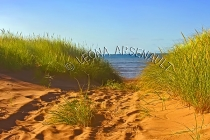 CANADA;PRINCE_EDWARD_ISLAND;PRINCE_COUNTY;MAXIMEVILLE;BEACHES;SAND;SUMMER;RED_SO