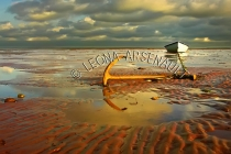 CANADA;PRINCE_EDWARD_ISLAND;PRINCE_COUNTY;ABRAM_VILLAGE;DORY;ANCHOR;RED_SOIL;SAN