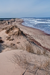 CANADA,PRICE_EDWARD_ISLAND,QUEENS_COUNTY,CAVENDISH,CAVENDISH_BEACH,BEACH,WATER,S
