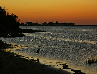 CANADA;PRICE_EDWARD_ISLAND;QUEENS_COUNTY;NORTH_RUSTICO;WHARF:BEACH;DAWN;BLUE_HER