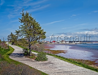 CANADA;PRICE_EDWARD_ISLAND;QUEENS_COUNTY;NORTH_RUSTICO;WHARF:BOATS;WATER;BEACH;N