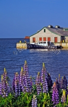 CANADA;PRINCE_EDWARD_ISLAND;QUEENS_COUNTY;VICTORIA_BY_THE_SEA;BOATS;BUILDINGS;SH