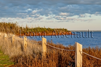 CANADA;PRICE_EDWARD_ISLAND;QUEENS_COUNTY;POINT_PRIM;FENCE_;WATER;HORIZONTAL;