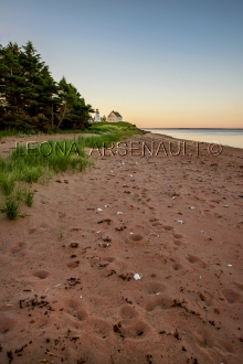 CANADA;PRINCE_EDWARD_ISLAND;KINGS_COUNTY;PANMURE_ISLAND;VERTICAL;SAND;BEACH;CLIF