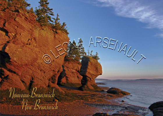 CANADA;NEW_BRUNSWICK;HOPEWELL_ROCKS;THE_ROCK_PROVINCIAL_PARK;BAY_OF_FUNDAY;CLIFF