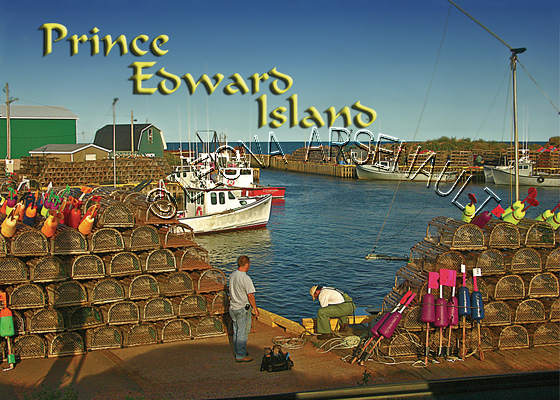 CANADA;PRINCE EDWARD ISLAND;PRINCE EDWARD ISLAND POSTCARDS;PEI POSTCARDS;PRINCE COUNTY;SEACOW POND;LOBSTER TRAPS;BUOYS;BOATS;FISHING;WATER;PIER;WHARF;SUNSET;HARBOUR; POSTCARDS;