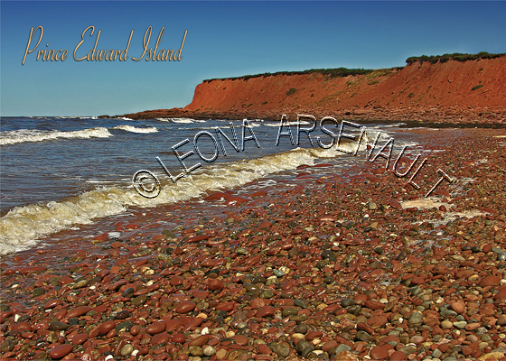 CANADA;PRINCE EDWARD ISLAND;PRINCE EDWARD ISLAND POSTCARDS;PEI POSTCARDS;KING'S COUNTY;CAMBELL'S COVE;NORTHSIDE ROAD;WATER;ROCKS;BEACH;POSTCARDS;