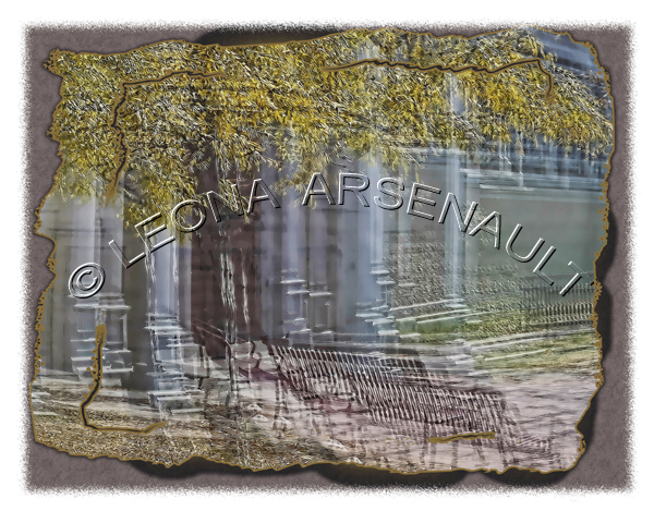 IMPRESSIONISTIC;LENS CREATION;ABSTRACT;IRON BENCHES;BENCHES;TREES;HORIZONTAL