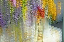 IMPRESSIONISTIC;LENS_CREATION;DIGITAL_ART;ABSTRACT;FLOWERS;HORIZONTAL