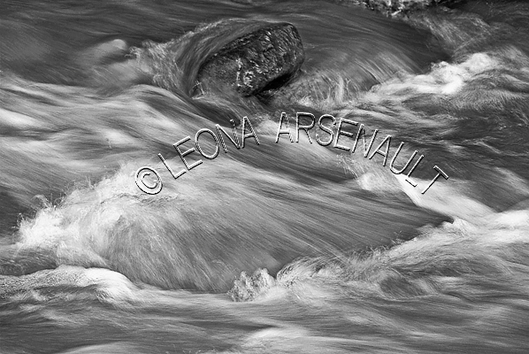 CANADA;ALBERTA;BANFF NATIONAL PARK;CANADIAN ROCKIES;ROCKY MOUNTAINS;ICEFIELD PARKWAY;FALL;WATER;FLOW;STREAM;FLUID;ROCKS;LANDSCAPE;SCENIC;BLACK AND WHITE;HORIZONTAL