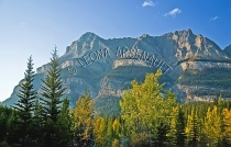 CANADA;ALBERTA;ICEFIELD_PARKWAY;CANADIAN_ROCKIES;ROCKY_MOUNTAINS;FALL;FALL_COLOR