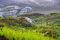 CANADA;NEWFOUNDLAND;ROSE_BLANCHE_HARBOUR_LE_COU;ROCKS;FENCE;LANDSCAPE;SCENIC;HOR