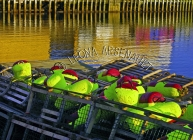 CANADA;PRINCE_EDWARD_ISLAND;PRINCE_COUNTY;ABRAM_VILLAGE;BUOYS;LOBSTER_TRAPS;TRAP