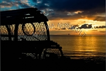 CANADA;PRINCE_EDWARD_ISLAND;PRINCE_COUNTY;CAP_EGMONT;LOBSTER_TRAPS;TRAPS;SUNSET;